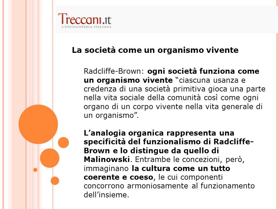 """Radcliffe-Brown: ogni società funziona come un organismo vivente """"ciascuna usanza e credenza di una società primitiva gioca una parte nella vita socia"""