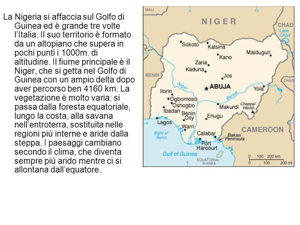 La Nigeria si affaccia sul Golfo di Guinea ed è grande tre volte l'Italia. Il suo territorio è formato da un altopiano che supera in pochi punti i 100