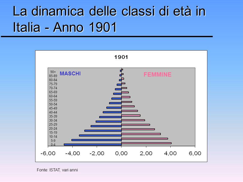 La dinamica delle classi di età in Italia - Anno 1901 FEMMINE MASCHI 90+ 85-89 80-84 75-79 70-74 65-69 60-64 55-59 50-54 45-49 40-44 35-39 30-34 25-29 20-24 15-19 10-14 5-9 0-4 Fonte: ISTAT, vari anni
