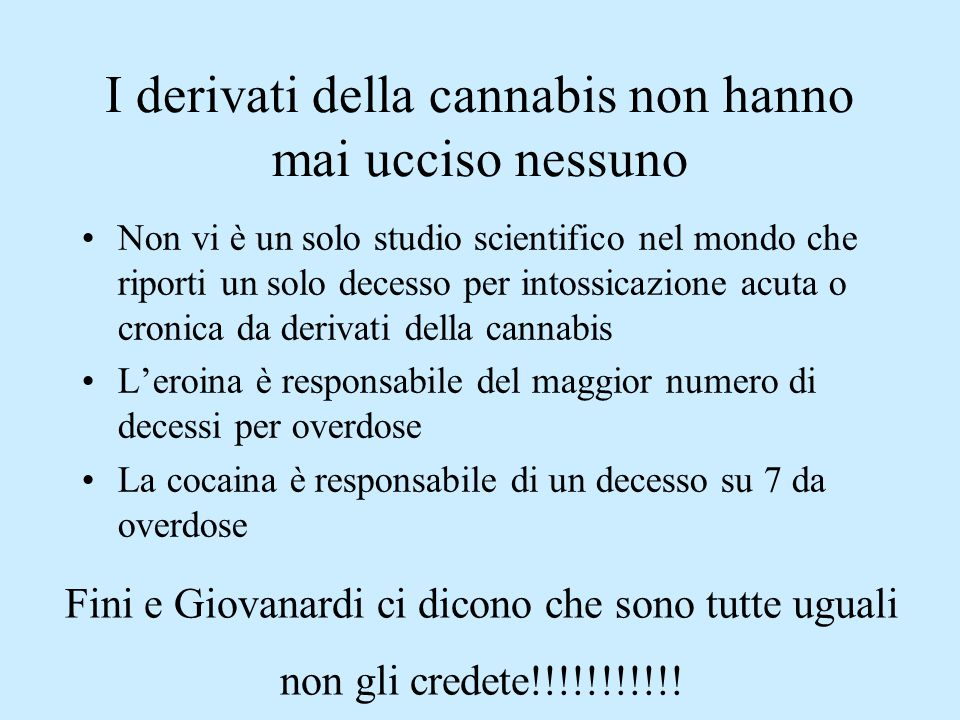 I derivati della cannabis non hanno mai ucciso nessuno Non vi è un solo studio scientifico nel mondo che riporti un solo decesso per intossicazione ac