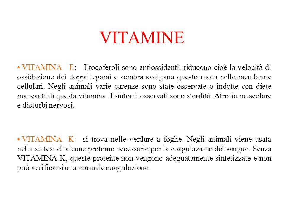 VITAMINE VITAMINA E: I tocoferoli sono antiossidanti, riducono cioè la velocità di ossidazione dei doppi legami e sembra svolgano questo ruolo nelle m