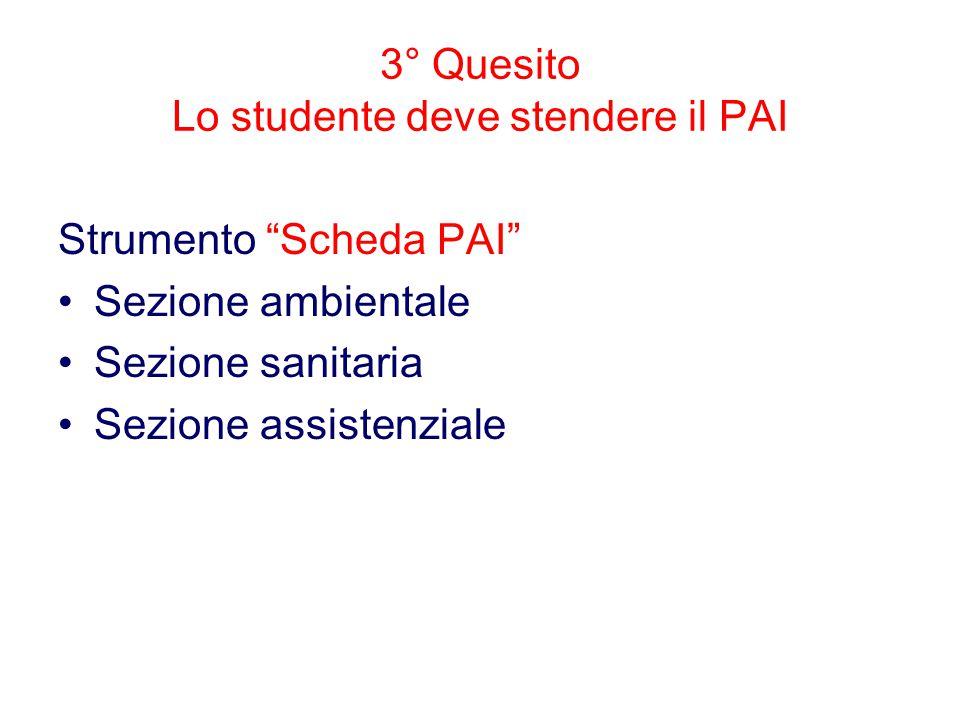 3° Quesito Lo studente deve stendere il PAI Strumento Scheda PAI Sezione ambientale Sezione sanitaria Sezione assistenziale
