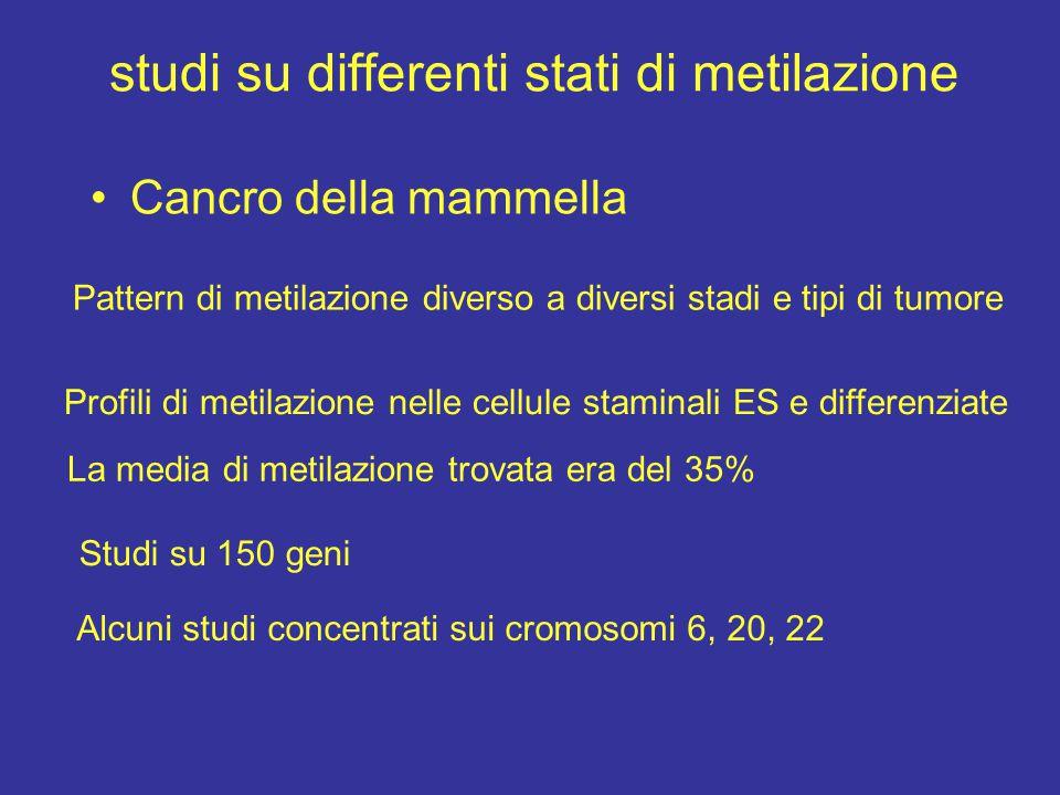 studi su differenti stati di metilazione Cancro della mammella Pattern di metilazione diverso a diversi stadi e tipi di tumore Profili di metilazione
