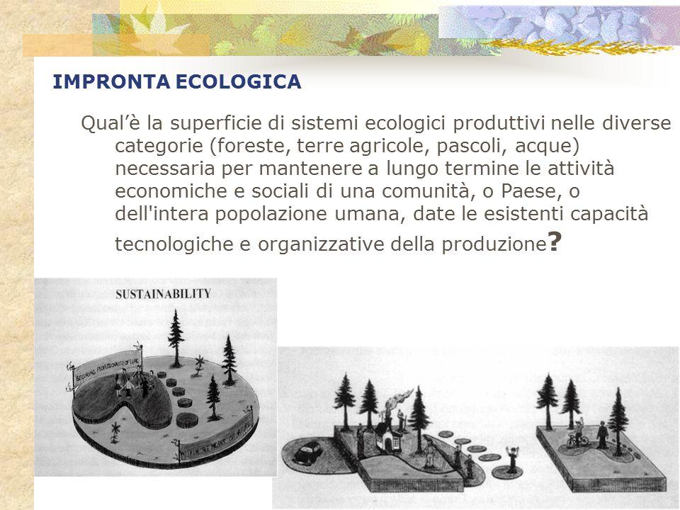 Qual'è la superficie di sistemi ecologici produttivi nelle diverse categorie (foreste, terre agricole, pascoli, acque) necessaria per mantenere a lung