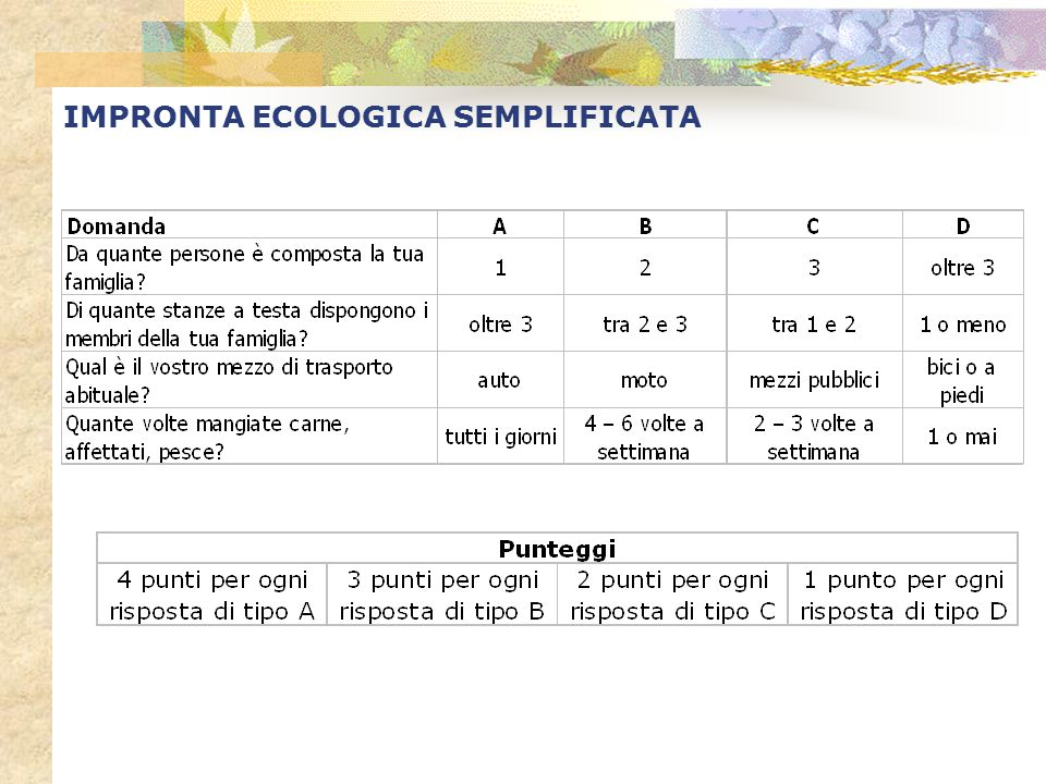 IMPRONTA ECOLOGICA SEMPLIFICATA