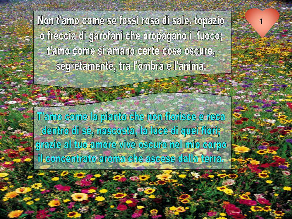 Pablo Neruda (1904-1973) è stato un poeta cileno.