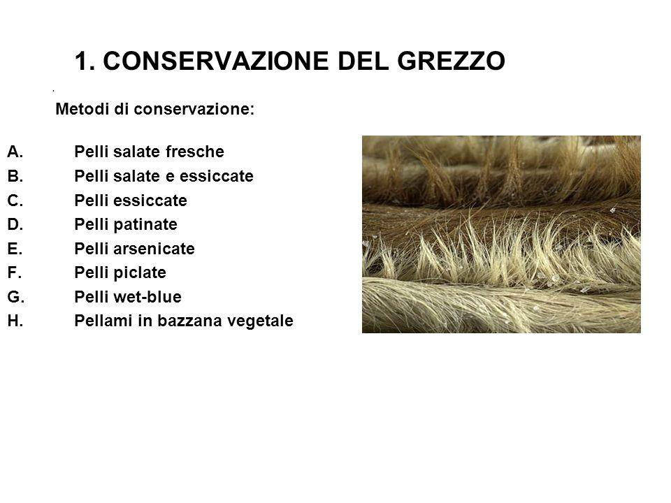 1. CONSERVAZIONE DEL GREZZO. Metodi di conservazione: A.Pelli salate fresche B.Pelli salate e essiccate C.Pelli essiccate D.Pelli patinate E.Pelli ars