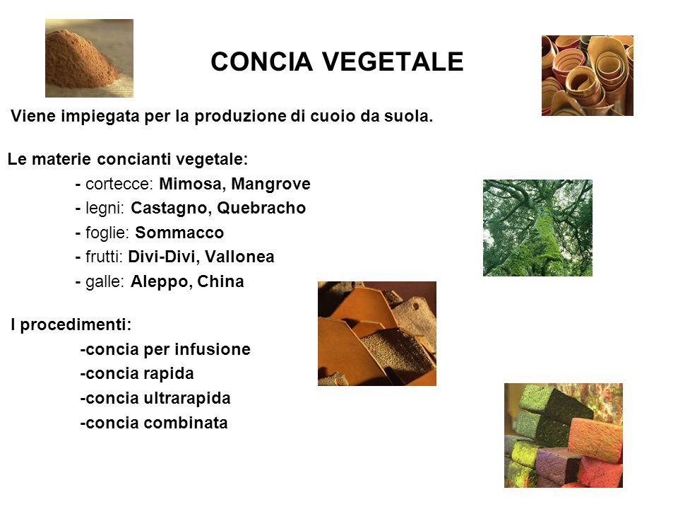 CONCIA VEGETALE Viene impiegata per la produzione di cuoio da suola. Le materie concianti vegetale: - cortecce: Mimosa, Mangrove - legni: Castagno, Qu