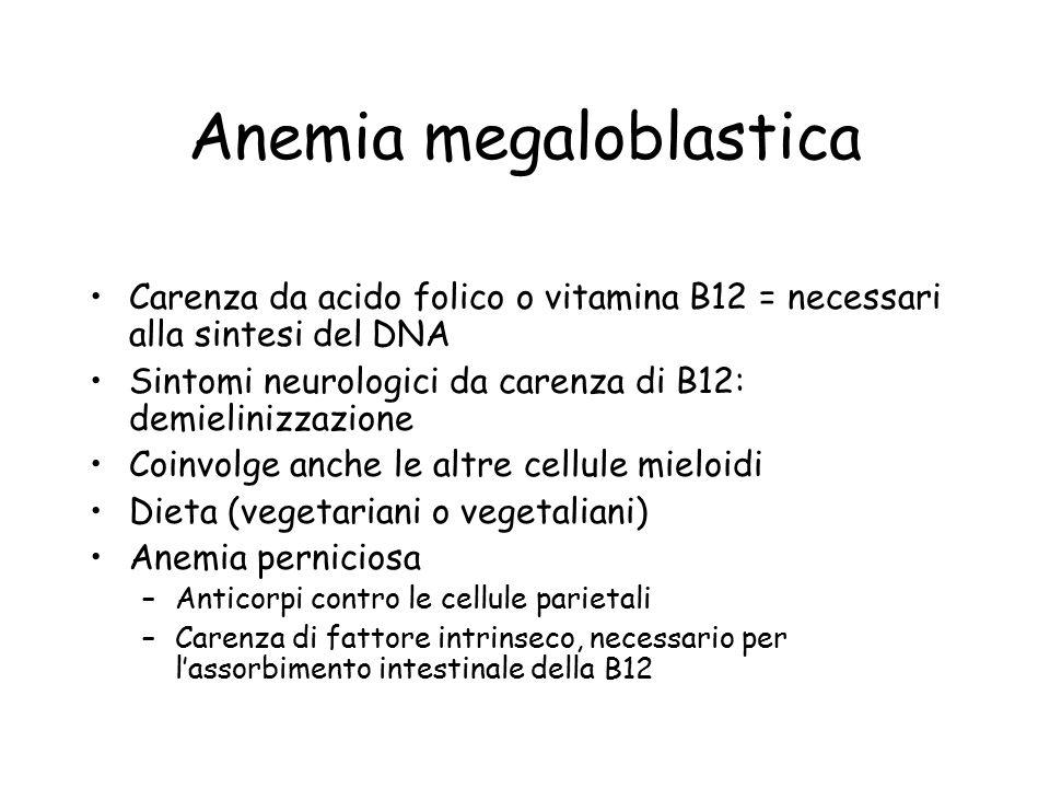 Anemia megaloblastica Carenza da acido folico o vitamina B12 = necessari alla sintesi del DNA Sintomi neurologici da carenza di B12: demielinizzazione