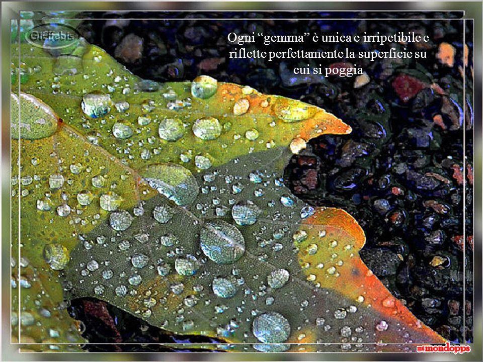 preziose e brillanti come purissimi cristalli di rocca.