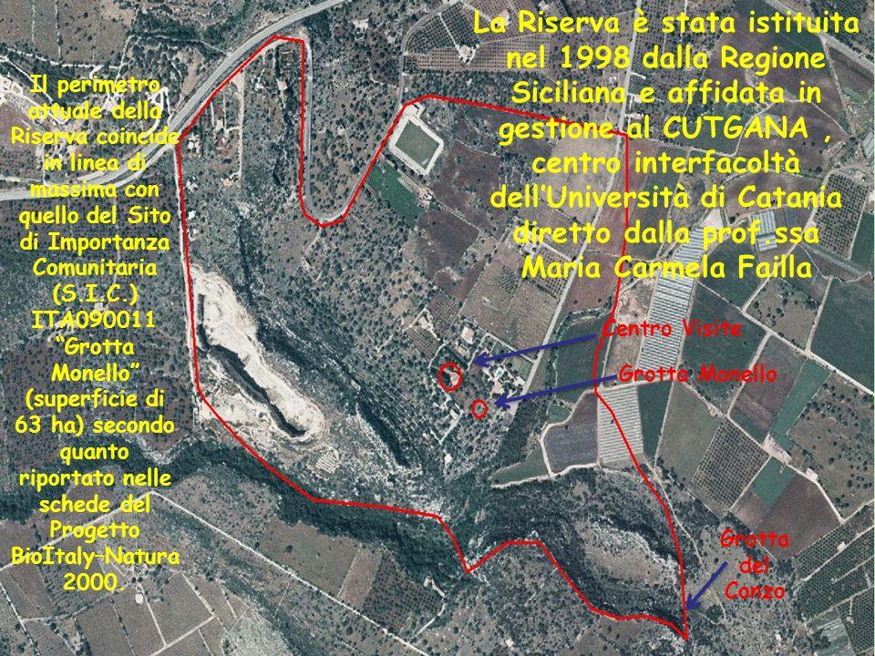 """07/04/20154 Il perimetro attuale della Riserva coincide in linea di massima con quello del Sito di Importanza Comunitaria (S.I.C.) ITA090011 """"Grotta M"""