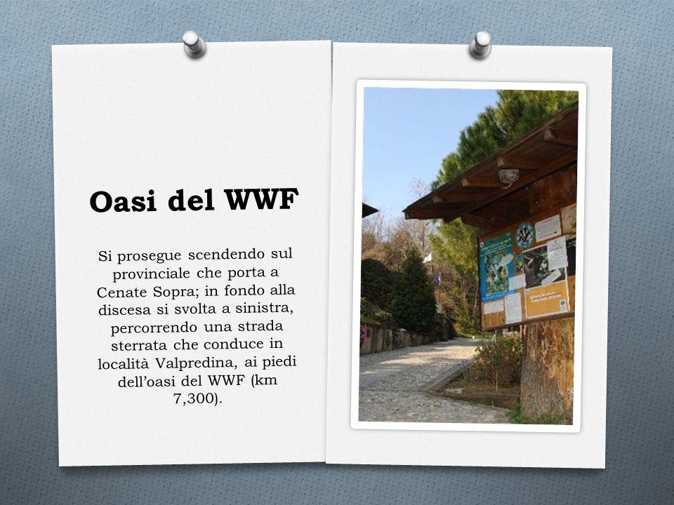 Oasi del WWF Si prosegue scendendo sul provinciale che porta a Cenate Sopra; in fondo alla discesa si svolta a sinistra, percorrendo una strada sterra