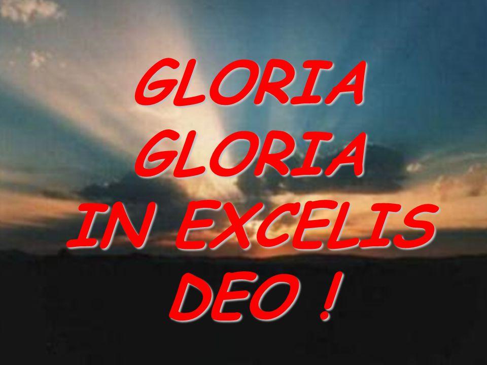 GLORIA GLORIA IN EXCELIS DEO !