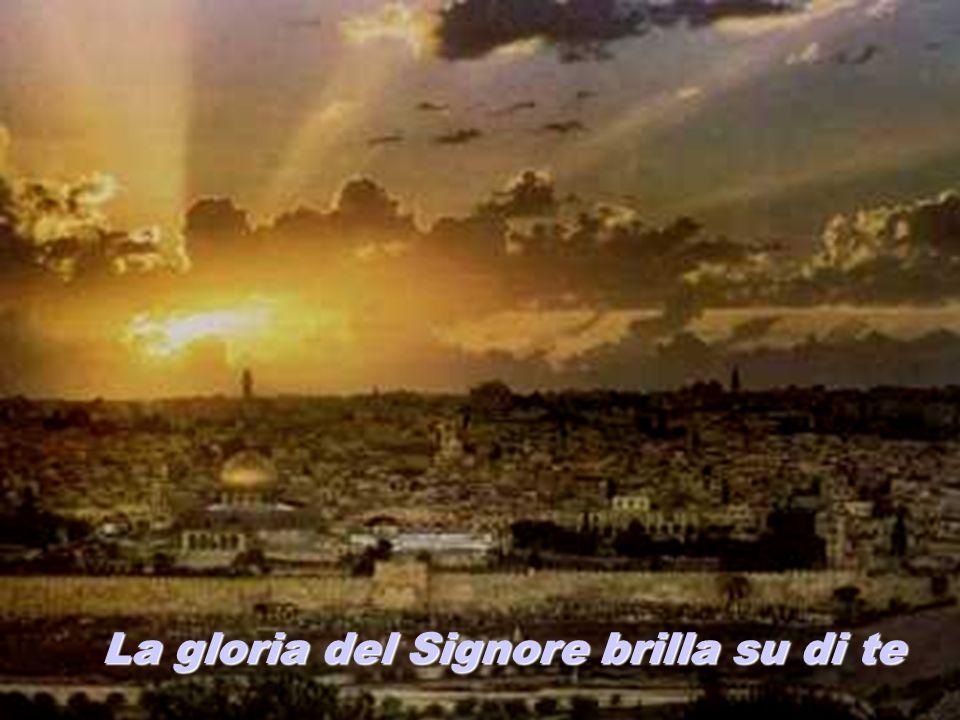 La gloria del Signore brilla su di te