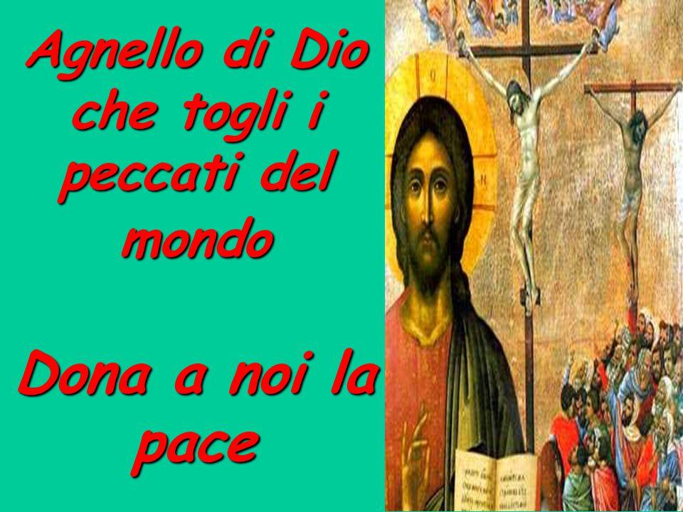 Agnello di Dio che togli i peccati del mondo Dona a noi la pace
