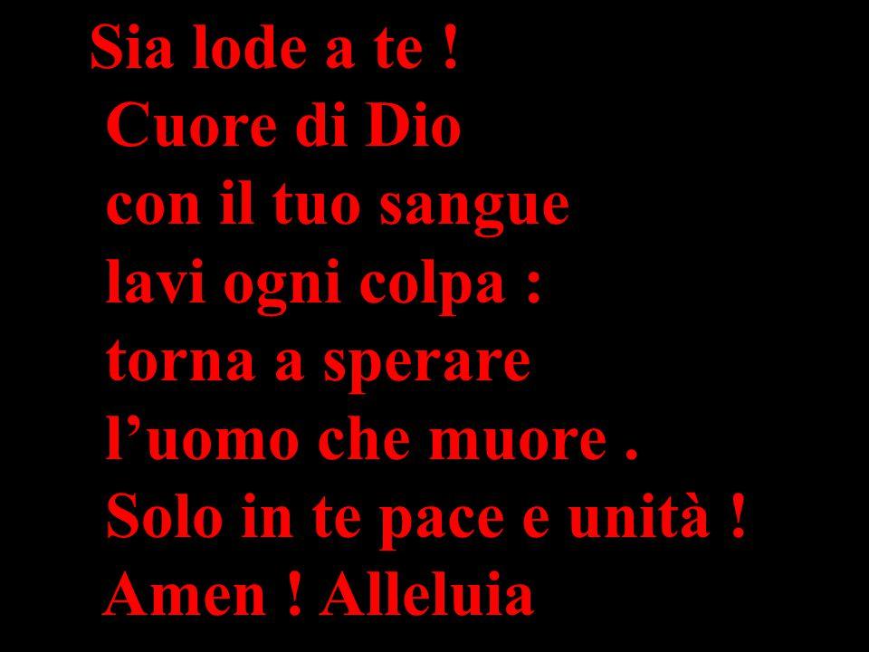 Sia lode a te ! Cuore di Dio con il tuo sangue lavi ogni colpa : torna a sperare l'uomo che muore. Solo in te pace e unità ! Amen ! Alleluia