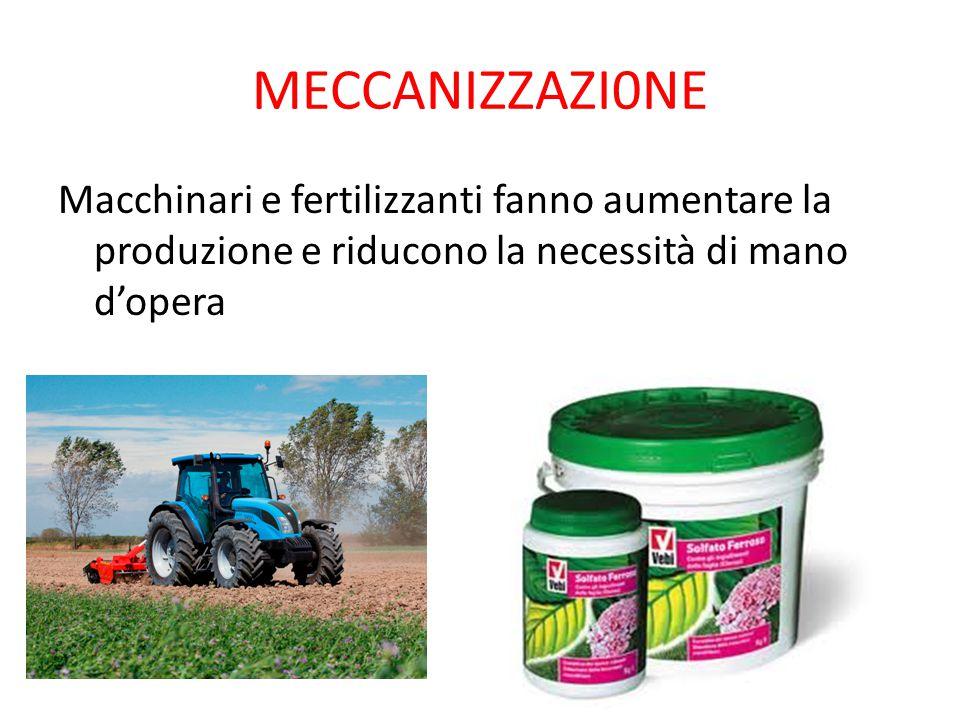 MECCANIZZAZI0NE Macchinari e fertilizzanti fanno aumentare la produzione e riducono la necessità di mano d'opera