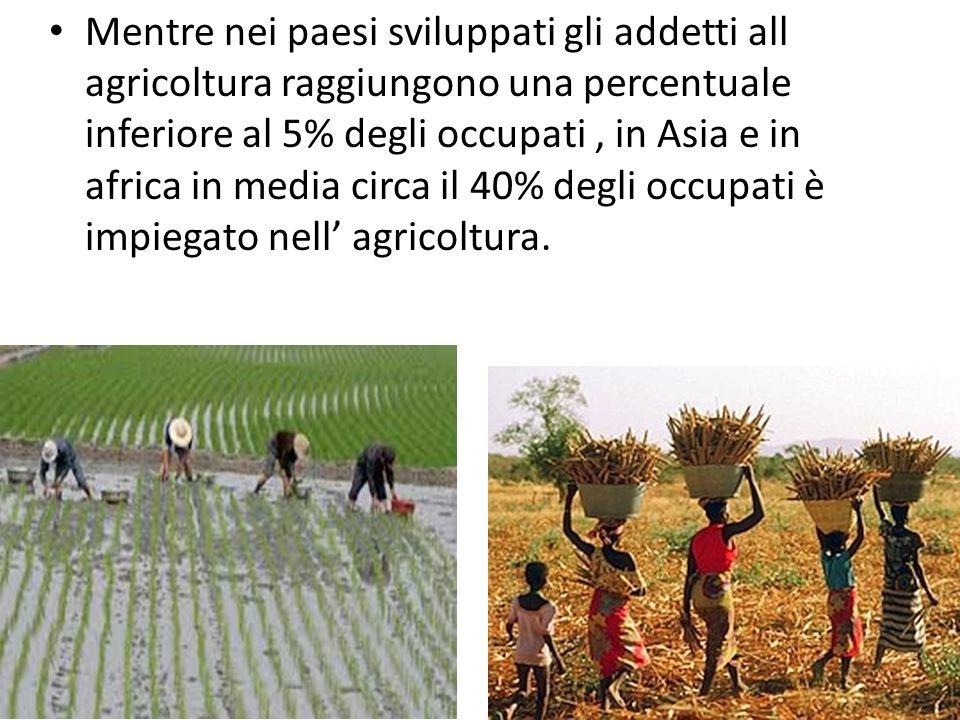 Mentre nei paesi sviluppati gli addetti all agricoltura raggiungono una percentuale inferiore al 5% degli occupati, in Asia e in africa in media circa