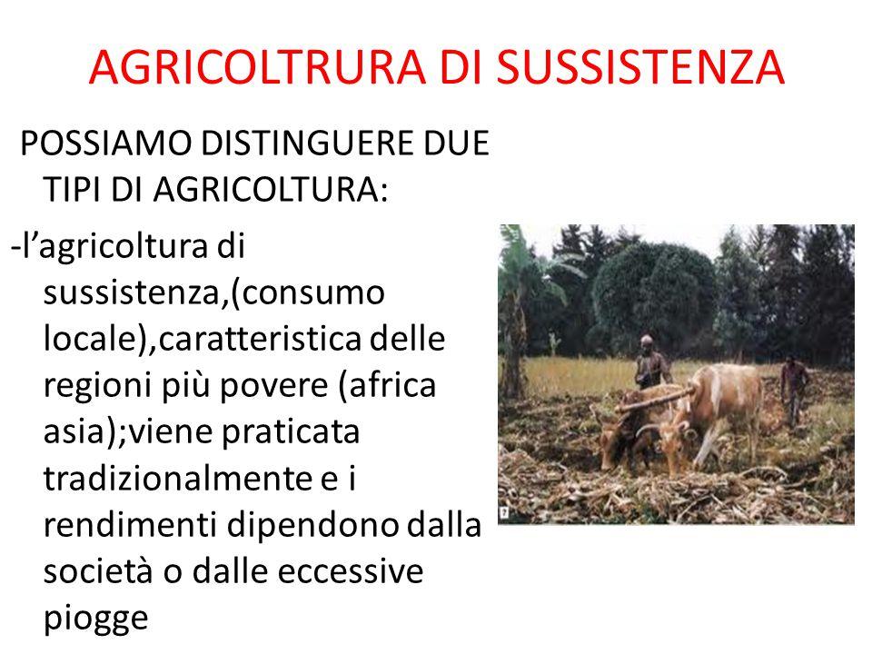 AGRICOLTRURA DI SUSSISTENZA POSSIAMO DISTINGUERE DUE TIPI DI AGRICOLTURA: -l'agricoltura di sussistenza,(consumo locale),caratteristica delle regioni