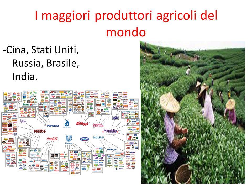 I maggiori produttori agricoli del mondo -Cina, Stati Uniti, Russia, Brasile, India.