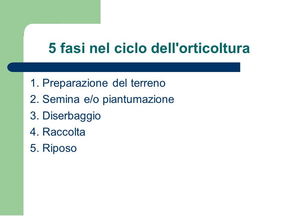 5 fasi nel ciclo dell'orticoltura 1. Preparazione del terreno 2. Semina e/o piantumazione 3. Diserbaggio 4. Raccolta 5. Riposo