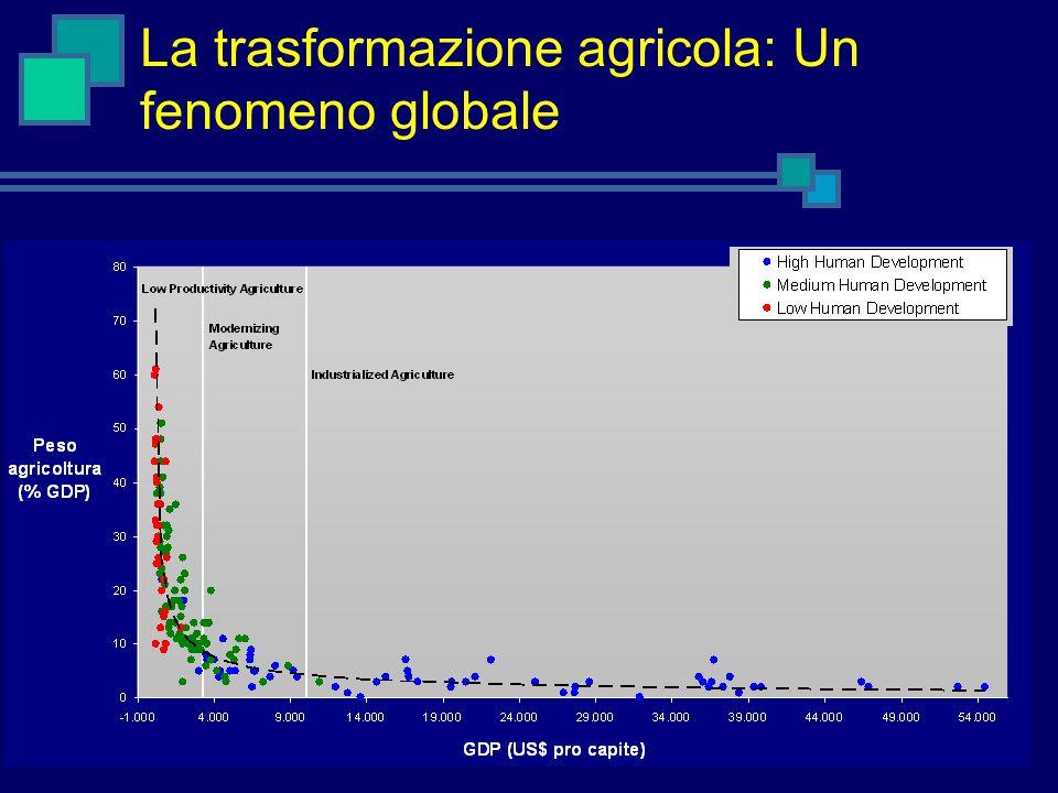La trasformazione agricola: Un fenomeno globale Sistemi agricoli industrializzati