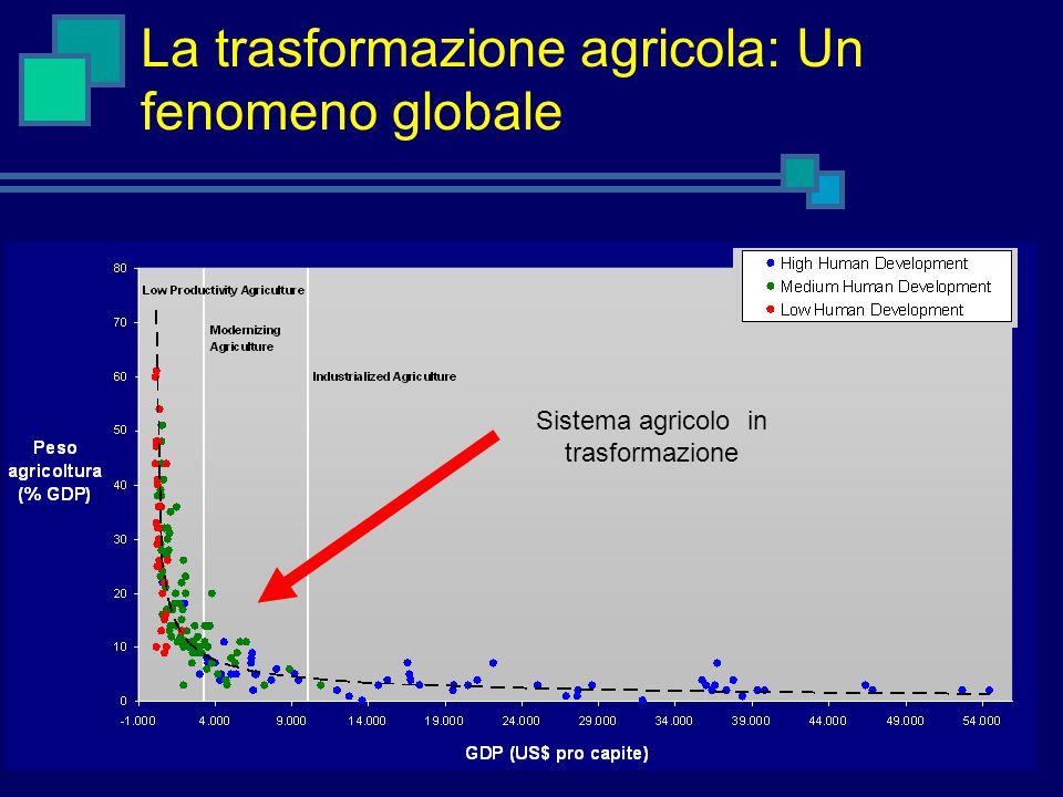 La trasformazione agricola: Un fenomeno globale Sistema agricolo in trasformazione