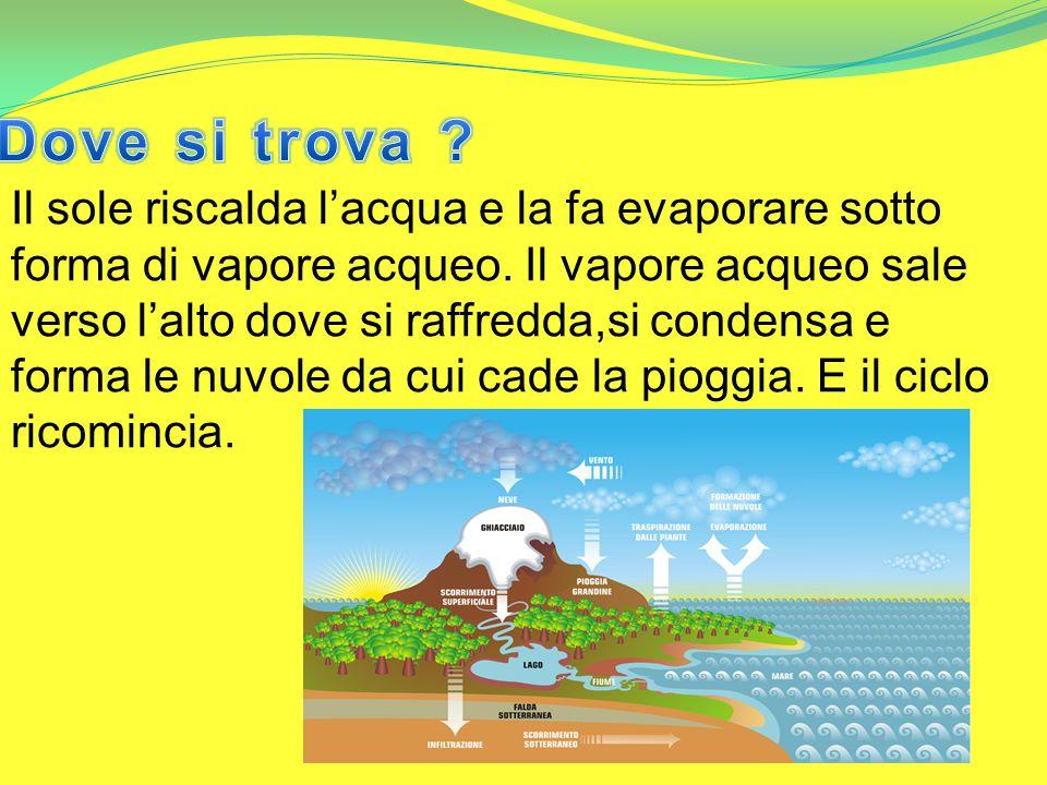 Il sole riscalda l'acqua e la fa evaporare sotto forma di vapore acqueo.