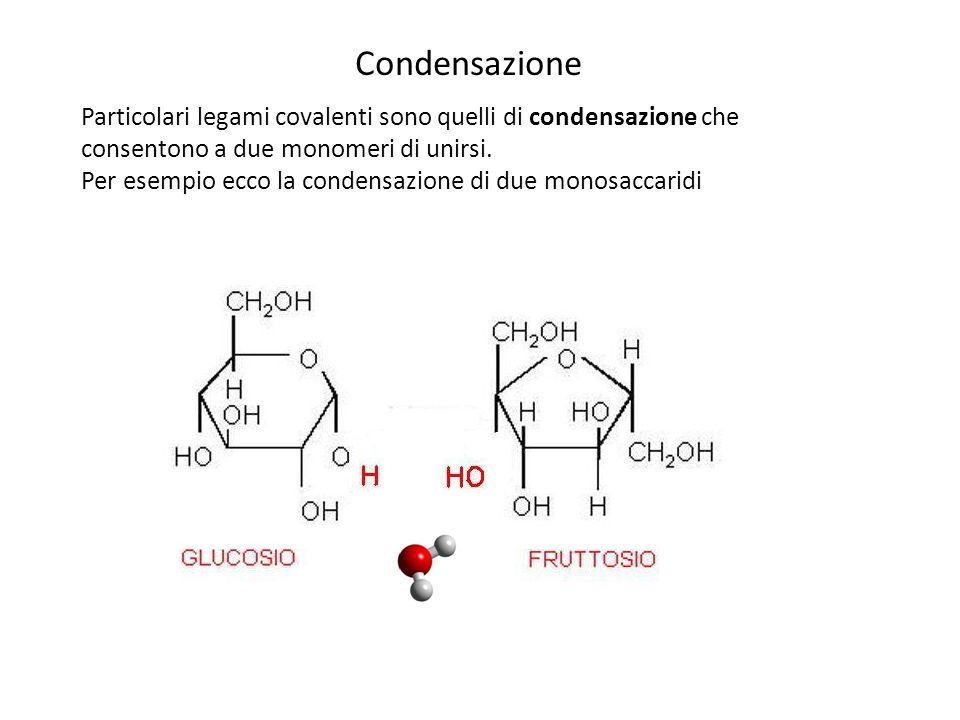 La condensazione consiste quindi nell'eliminazione di una molecola di acqua… … e nell'unione, sempre tramite legame covalente, di ciò che rimane Condensazione Questo particolare legame covalente tra monosaccaridi è detto glicosidico