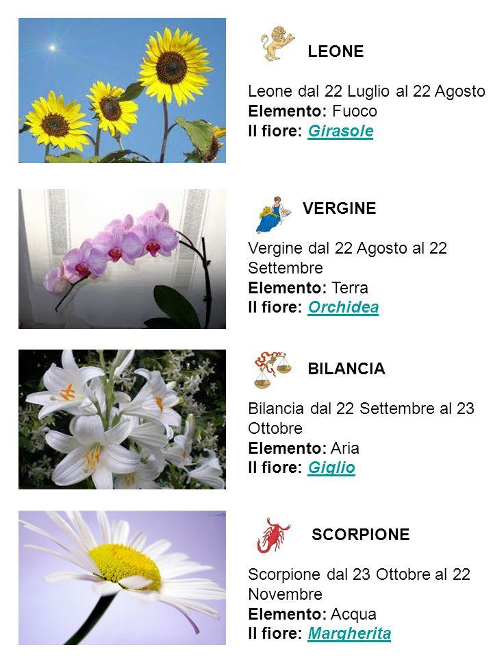 LEONE Leone dal 22 Luglio al 22 Agosto Elemento: Fuoco Il fiore: GirasoleGirasole VERGINE Vergine dal 22 Agosto al 22 Settembre Elemento: Terra Il fio