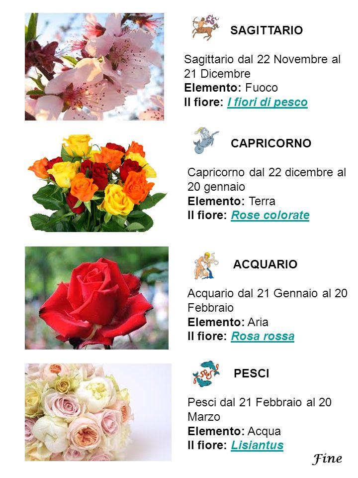 SAGITTARIO Sagittario dal 22 Novembre al 21 Dicembre Elemento: Fuoco Il fiore: I fiori di pescoI fiori di pesco CAPRICORNO Capricorno dal 22 dicembre