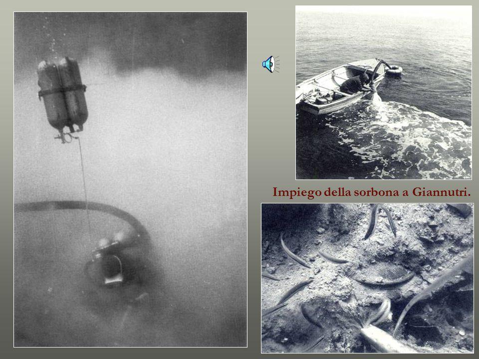 La campana a Isola delle Femmine (Palermo) e sul relitto di Spargi (II/I sec. a C.)