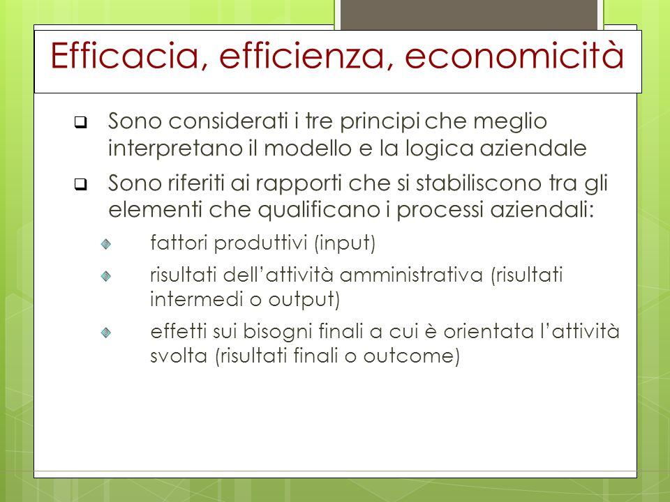 Efficacia, efficienza, economicità  Sono considerati i tre principi che meglio interpretano il modello e la logica aziendale  Sono riferiti ai rappo