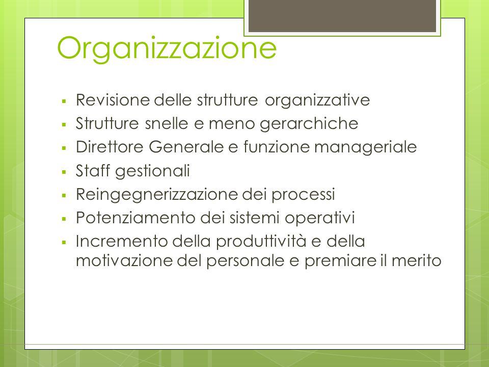 Organizzazione  Revisione delle strutture organizzative  Strutture snelle e meno gerarchiche  Direttore Generale e funzione manageriale  Staff ges