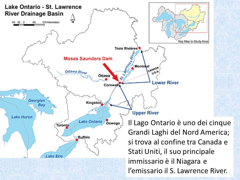 Il Lago Ontario è uno dei cinque Grandi Laghi del Nord America; si trova al confine tra Canada e Stati Uniti, il suo principale immissario è il Niagar