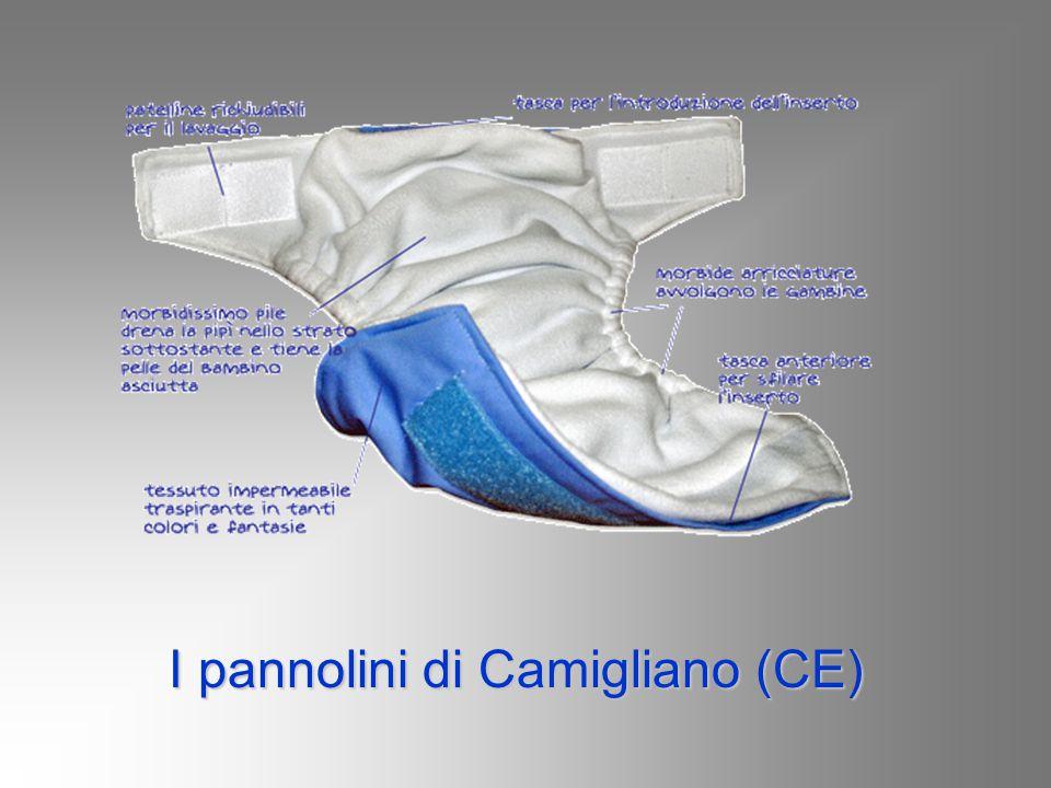 I pannolini di Camigliano (CE) I pannolini di Camigliano (CE)
