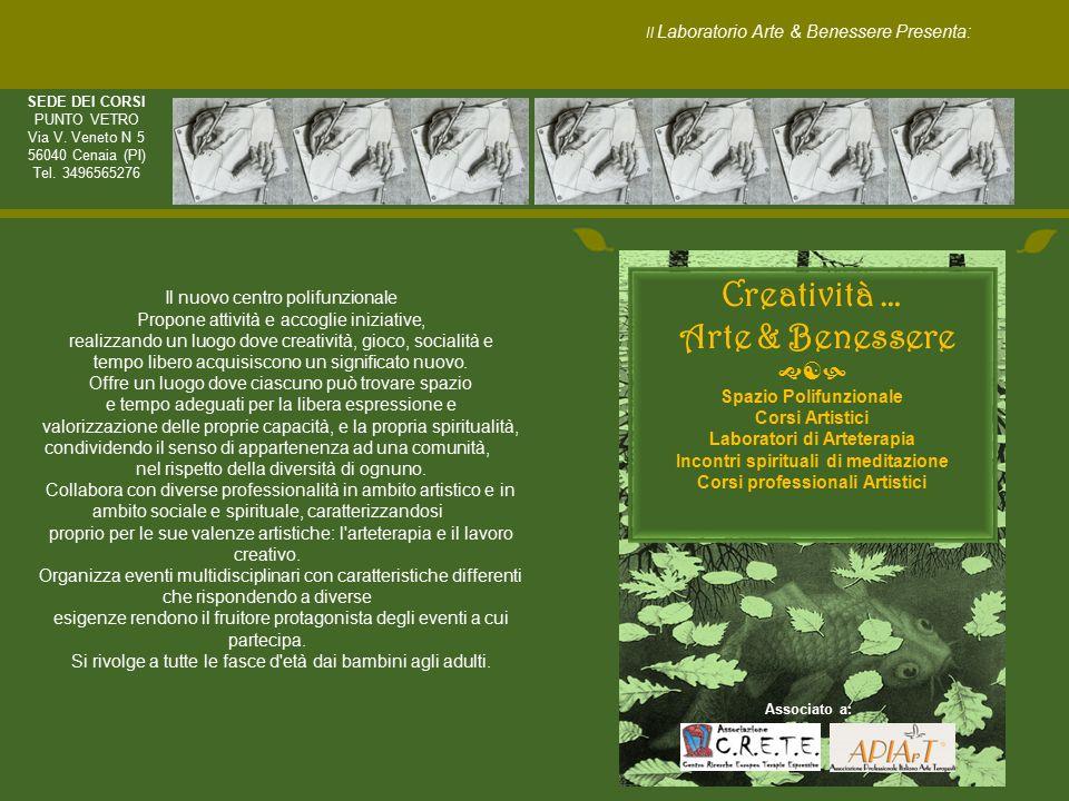 Curriculum M.LUCIA CASTRO, Artista Arteterapeuta iscritta all'Albo A.P.I.A.r.T.