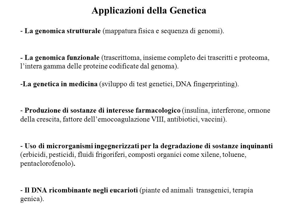 Applicazioni della Genetica - La genomica strutturale (mappatura fisica e sequenza di genomi). - La genomica funzionale (trascrittoma, insieme complet