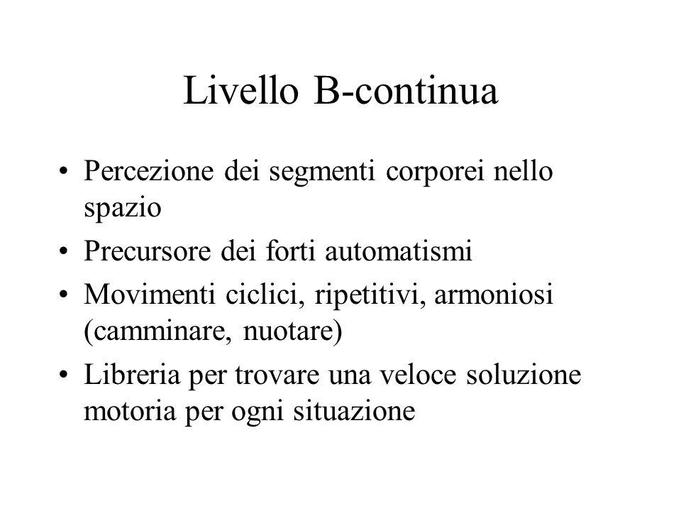 Livello B-continua Percezione dei segmenti corporei nello spazio Precursore dei forti automatismi Movimenti ciclici, ripetitivi, armoniosi (camminare, nuotare) Libreria per trovare una veloce soluzione motoria per ogni situazione