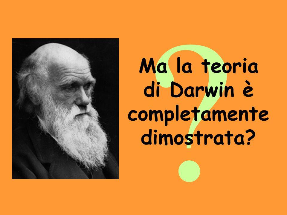 ? Ma la teoria di Darwin è completamente dimostrata?