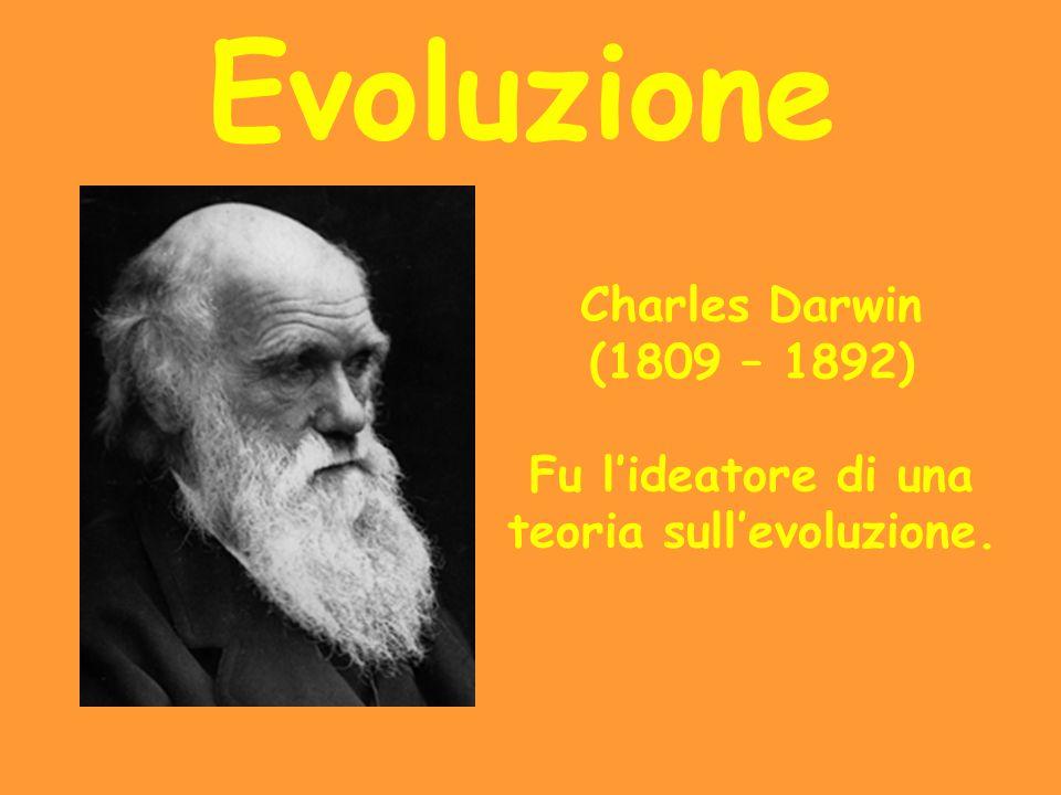Evoluzione Charles Darwin (1809 – 1892) Fu l'ideatore di una teoria sull'evoluzione.