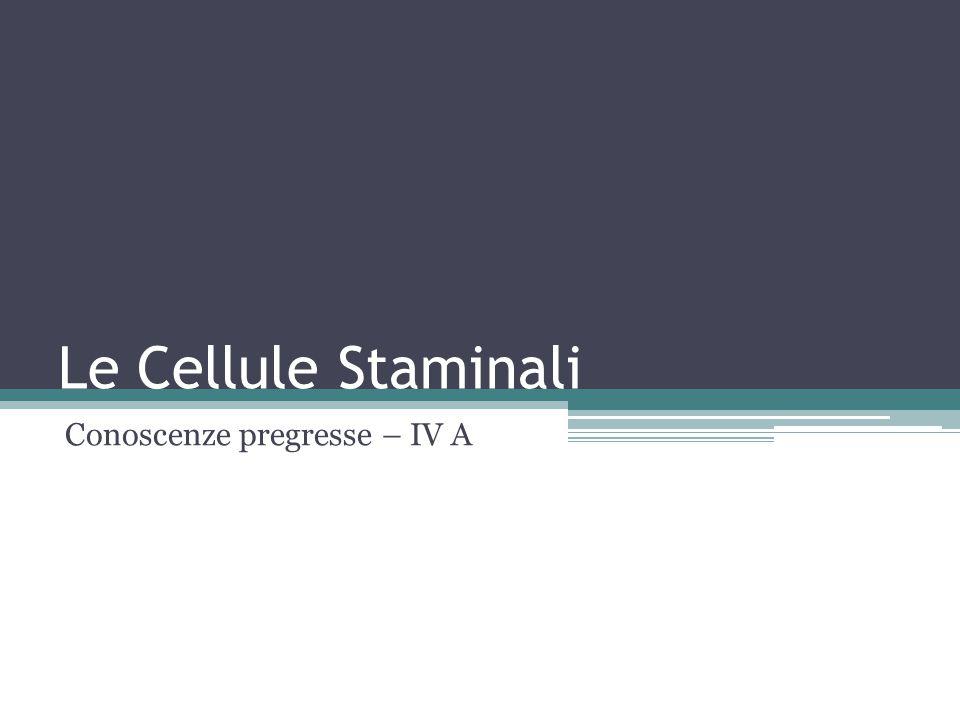 Le Cellule Staminali Conoscenze pregresse – IV A