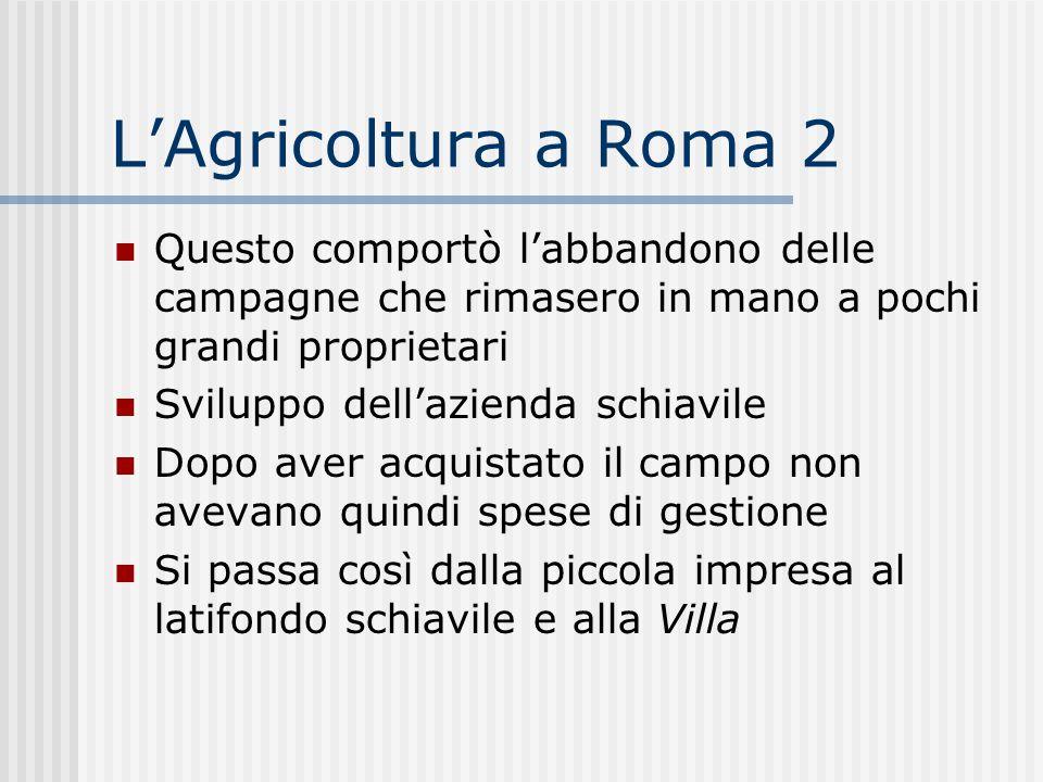 L'Agricoltura a Roma 2 Questo comportò l'abbandono delle campagne che rimasero in mano a pochi grandi proprietari Sviluppo dell'azienda schiavile Dopo