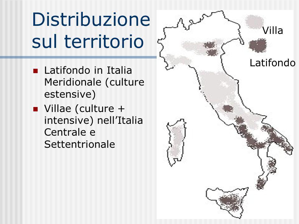 Distribuzione sul territorio Latifondo in Italia Meridionale (culture estensive) Villae (culture + intensive) nell'Italia Centrale e Settentrionale Vi