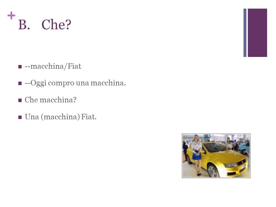 + B.Che? --macchina/Fiat --Oggi compro una macchina. Che macchina? Una (macchina) Fiat.