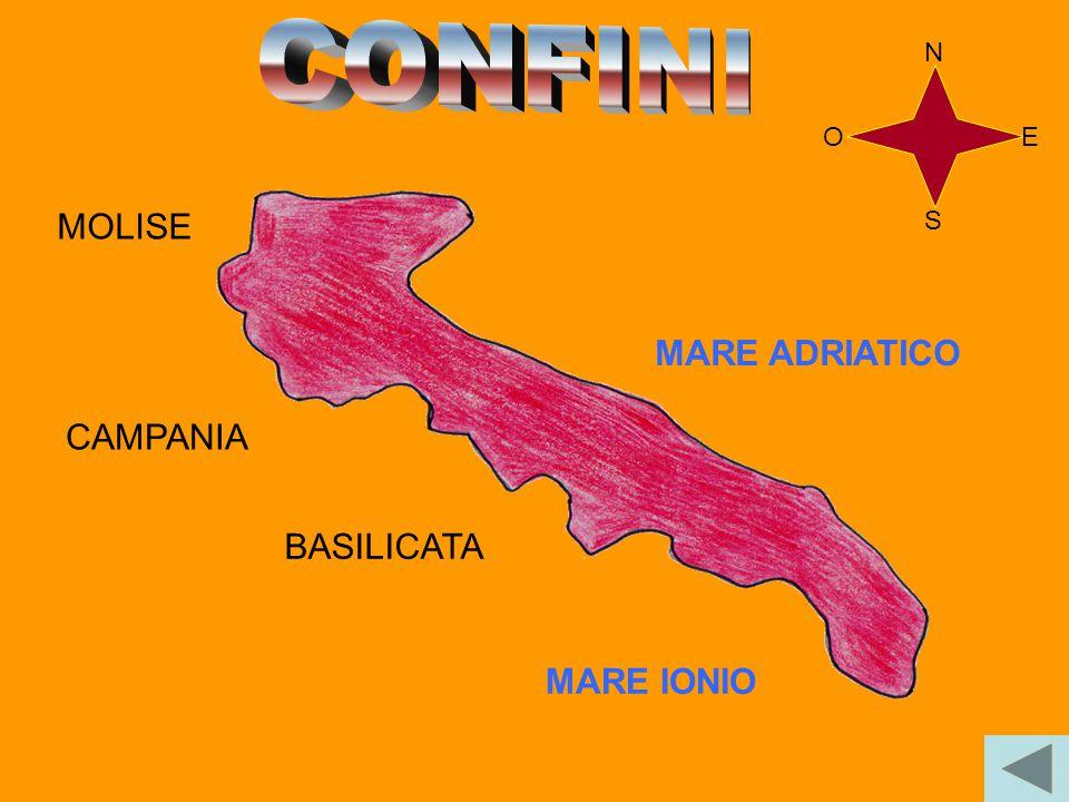 SUPERFICIE: 19 364 Km POPOLAZIONE: 4 080 375 ab. DENSITA': 211 ab. /Km LA PUGLIA SI TROVA NELL'ITALIA MERIDIONALE. N E S O