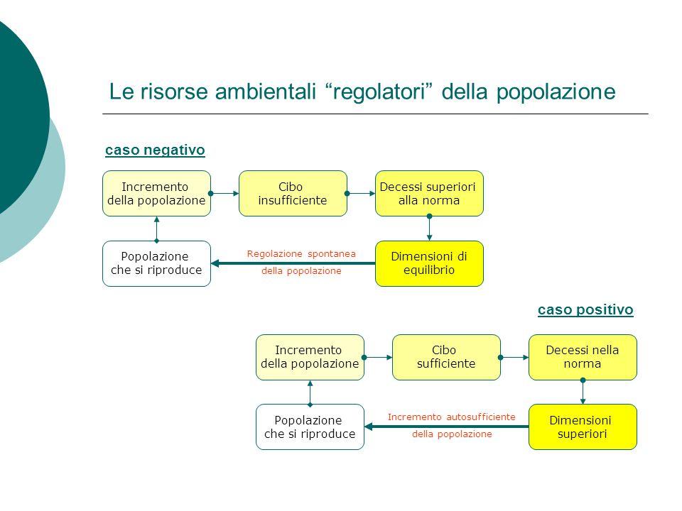Sistemi ambientali Cosa si intende per sistema.