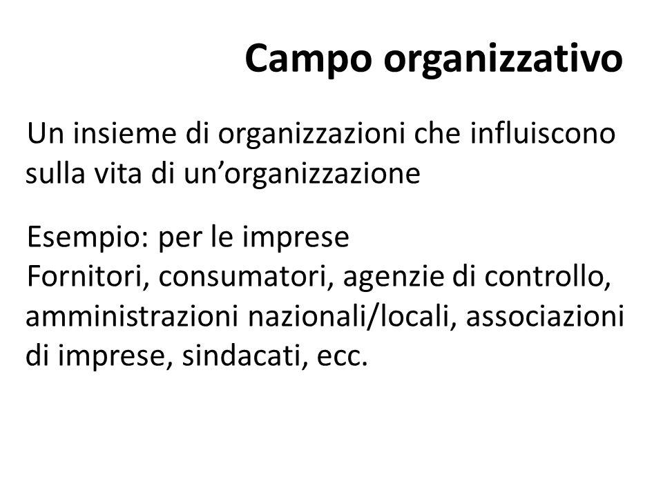 Campo organizzativo Un insieme di organizzazioni che influiscono sulla vita di un'organizzazione Esempio: per le imprese Fornitori, consumatori, agenz