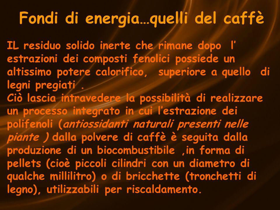 Fondi di energia…quelli del caffè IL residuo solido inerte che rimane dopo l' estrazioni dei composti fenolici possiede un altissimo potere calorifico, superiore a quello di legni pregiati.