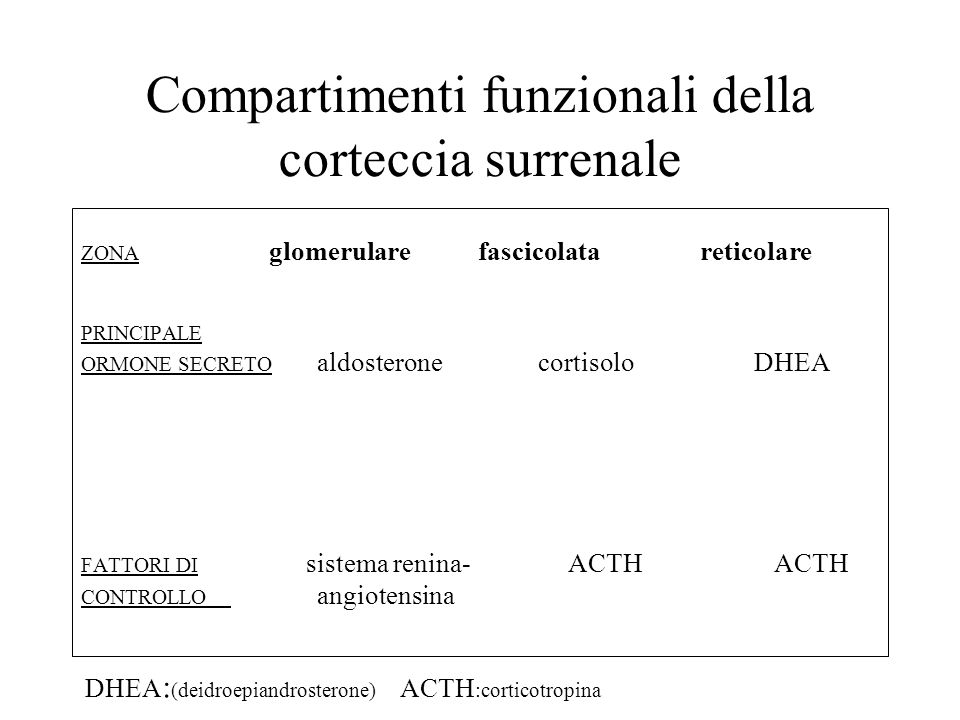 Compartimenti funzionali della corteccia surrenale ZONA glomerulare fascicolata reticolare PRINCIPALE ORMONE SECRETO aldosterone cortisolo DHEA FATTOR